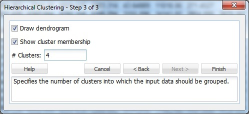 Hierarchical Clustering Step 3 of 3 Dialog
